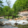 Small wooden bridge over the mountain river  — Stock Photo