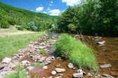 Small creek in mountains — Stock Photo