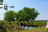 Windmill on small pond used for water irrigation — Stok fotoğraf