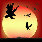 Birds at sunset — Stock Vector