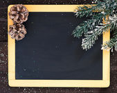 Blackboard blank decorated with fir branch and cone. — Stock Photo