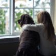 Little girl and her dog looking out the window. — Stock Photo #38439907