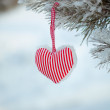 Christmas decoration: fabric heart fir branches on snow background — 图库照片