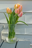 A bunch of pink tulips in a vase — Stock Photo