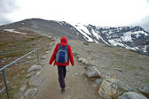 Trekker walks to the mountain peak — Stock Photo
