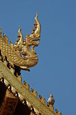 Naga dragon golden statue in Northen Thailand temple — Stock Photo