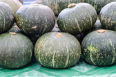 Big pile of orange and green gourds or squash — Stockfoto