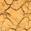 Texture of dry and cracked earth background — Foto Stock #41389749