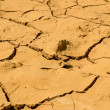 Texture of dry and cracked earth background — Stockfoto #41390157