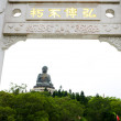 Tian Tan Buddha - The worlds's tallest bronze Buddha in Lantau Island, Hong Kong — Stock Photo #43641867