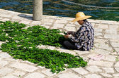 HONG KONG - MARCH 27: Were dried seaweed in Repulse Bay, Hong Kong. on March 27, 2014. — Stock Photo