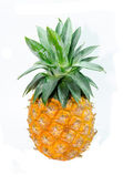 Pineapple isolated on white — Stockfoto