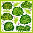 Stock Vector: Bushes