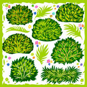 Bushes  — Stock Vector