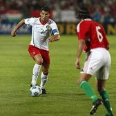 匈牙利与葡萄牙足球比赛 — Zdjęcie stockowe