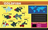 Types of goldfish — Stock Vector