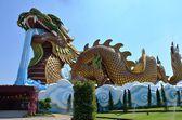 дракон — Стоковое фото