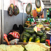 Woman sleeping surrounded by watermelons — Foto Stock