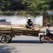 Stock Photo: Oversized timber transport by motorbike