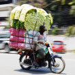Постер, плакат: Motorbike driver with an overloaded vegetable transport