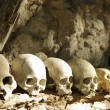 Stock Photo: Skulls lined up at traditional burial site