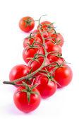 Pęczek świeżych pomidorów cherry — Zdjęcie stockowe