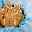Gingerbread cookies — Stock Photo #35802067