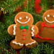Gingerbread cookies — Stock Photo #35802263