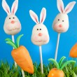 Bunny and carrot cake pops — Stock Photo #39475385