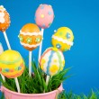 Easter egg cake pops — Stock Photo