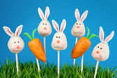 Bunny and carrot cake pops — Stock Photo