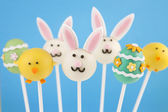 Easter cake pops — Stockfoto