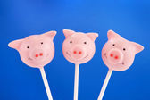 Pig cake pops — Stock Photo