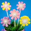 Flower cake pops — Stock Photo #39530227
