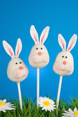 Bunny cake pops — Stock Photo