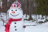 Sněhulák — Stock fotografie