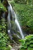 Waterfall in Brana Sousas, Asturias. — Stock Photo