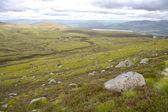Landscape in Cairngorms National Park, Scotland. UK. — Stock Photo