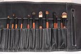 Set van make-up borstels — Stockfoto