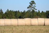 Landscape Hay Bales Under Blue Sky — Stock Photo