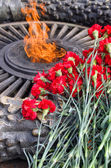 May 9 Victory Day, Red carnations and eternal flame, День Победы — Stock Photo