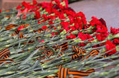 May 9 Victory Day, Red carnations, День Победы — Stock Photo