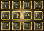 Vector zodiac signs — Stock Vector