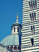 Detail of siena cathedral — 图库照片