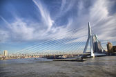 Erasmus Bridge in Rotterdam on the Nieuve-Maas River — Stock Photo