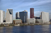 High buildings on the right side of Nieuwe-Maas river — Stockfoto
