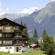Постер, плакат: Swiss house and mountains on background in Murren