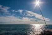 Pesca em um dia ensolarado — Foto Stock