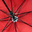 Red Umbrella — Stock Photo #35606775