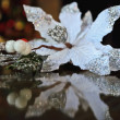 White flower laying on the glass and reflected in it — Stock Photo #39681441